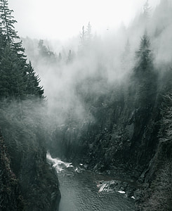 river with fog during daytime