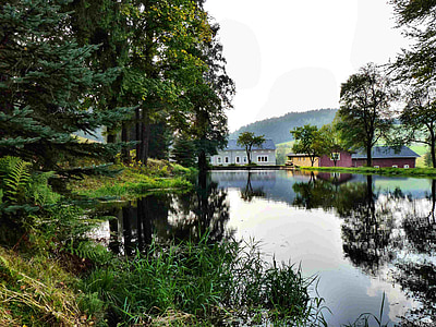 houses near the lake and trees during day