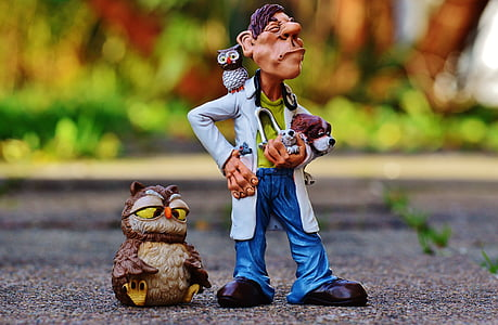 veterinarian with owl and dogs toy on concrete floors