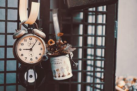 twin-bell alarm clock beside plant pot