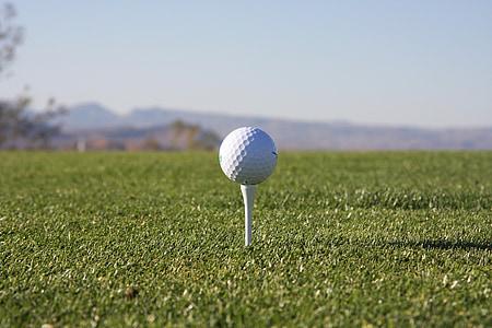 selective focus photography of golf ball on golf tee