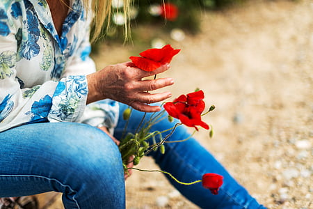 person holding red flowers