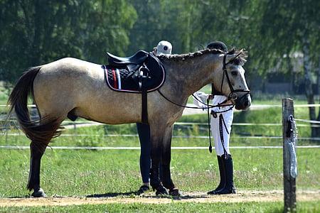 man beside horse with saddle