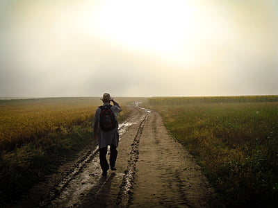 photo of man walking towards destination surrounded by rice fields