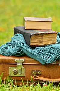 selective focus photography of two books on leather suitcase