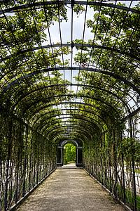 black metal tunnel under green leafed trees