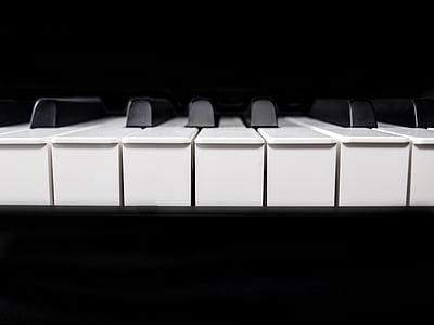 closeup photo of piano keys