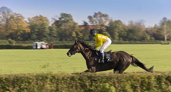 man riding brown horse