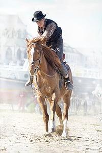 cowboy riding brown horse