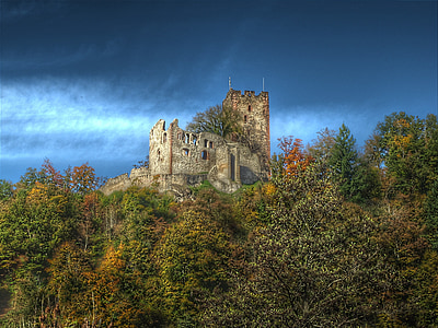 gray castle surrounded with green trees