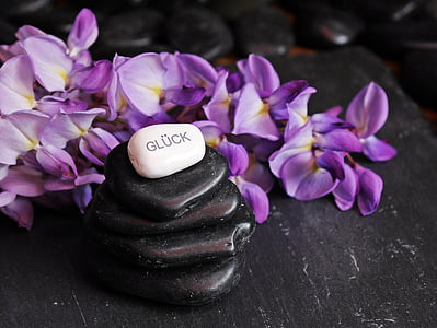 stack of black and white pebbles beside purple petaled flowers