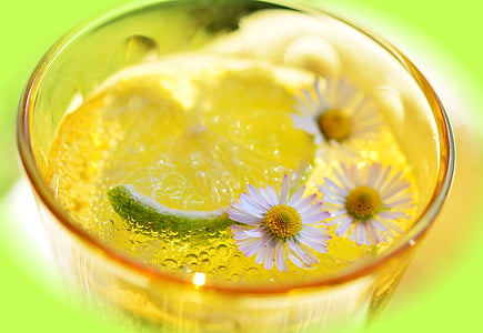 closeup photo of white liquid with white flower and lemon slice