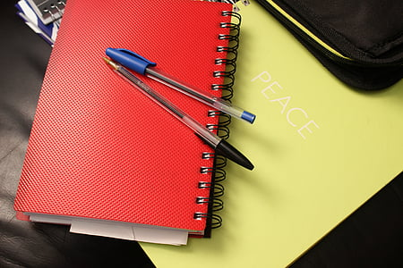blue and black ballpoint pens on top of red notebook