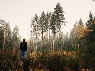 man standing facing forest trees