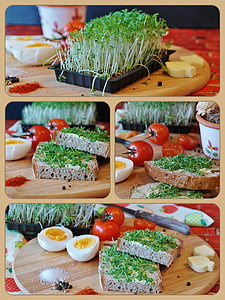 egg and bread sandwich collage