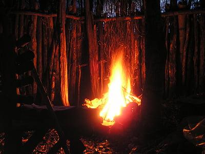 lighter fire between trees