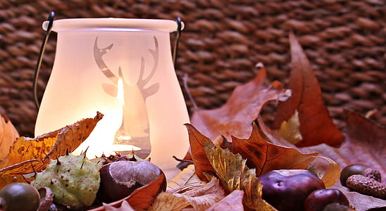 white frosted glass vase with light on leafy surface