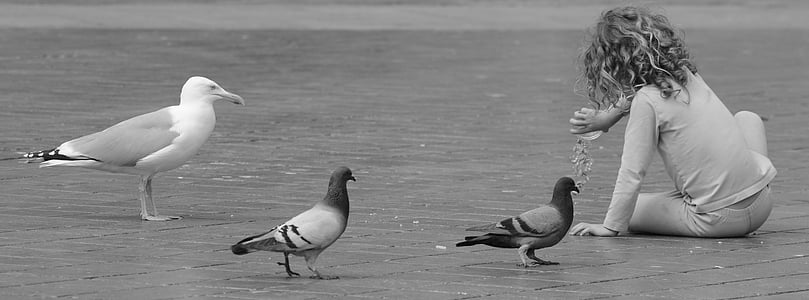grayscale photo of birds near toddler