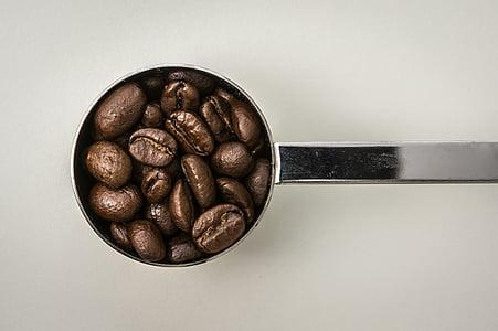 coffee bean on coffee ladle