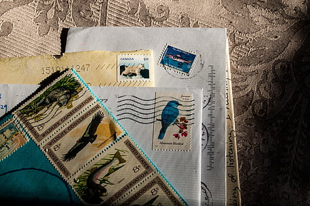 assorted animal-print postage stamps