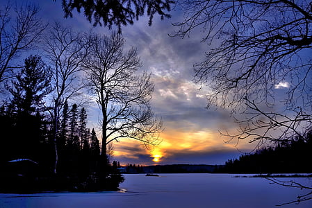 silhouette of trees and snow