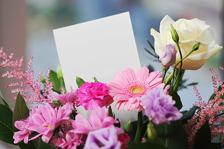 selective focus photography of pink daisies, pink carnation flowers, purple and white rose flowers bouquet