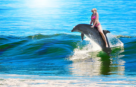 woman riding on dolphin