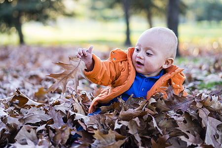 toddler playing with dry leaves