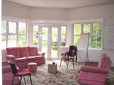 pink sofa chair and 3-seat sofa in house