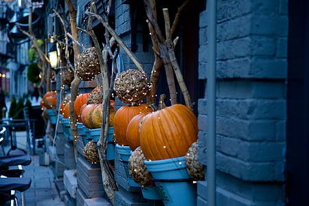 orange pumpkins outside gray concrete building