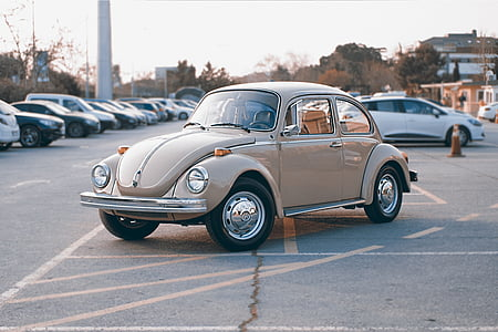 classic gray Volkswagen Beetle coupe at parking lot