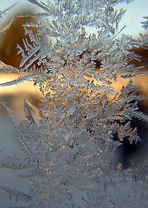 close-up photo of snowflake