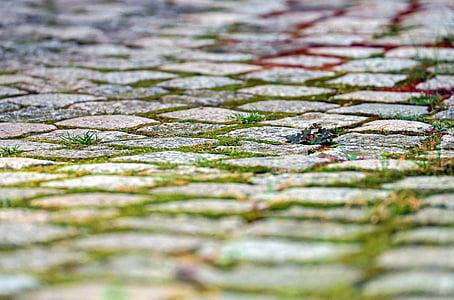 closeup photo of gray stepping stones