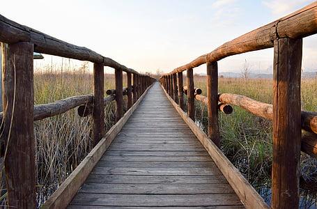 brown wooden boardwalk under white sky