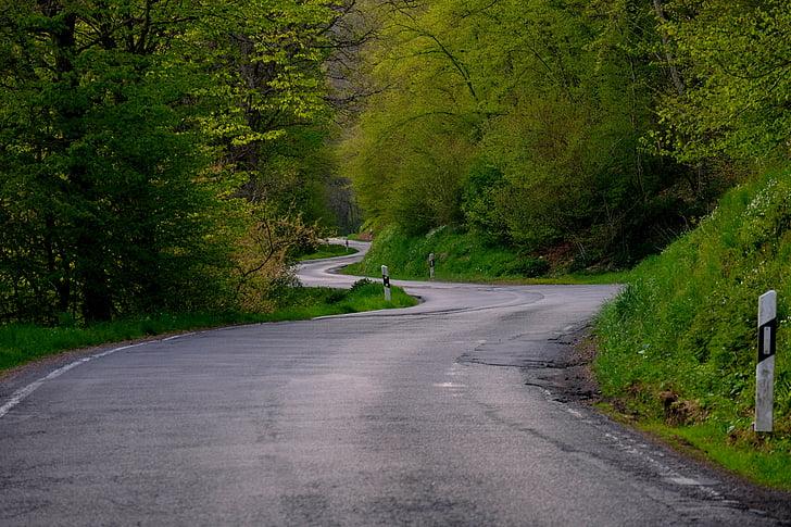 landscape photography of zigzag road