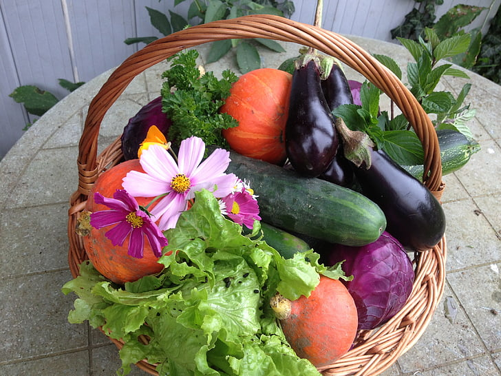 vegetable basket on table near potted plant