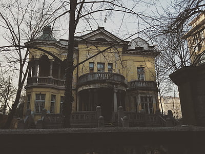 brown and black house
