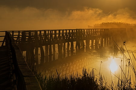 bridge covered by fog during golden hour