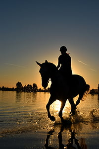 woman and horse silhouette during sunset