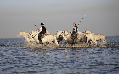 two men riding on horses crossing in water