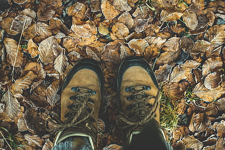 person wearing brown-and-black leather hiking boots standing on ground with brown leaves