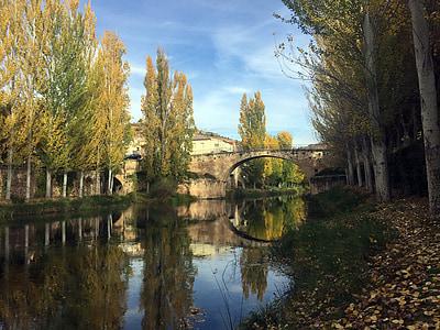 concrete arch bridge near trees during daytime