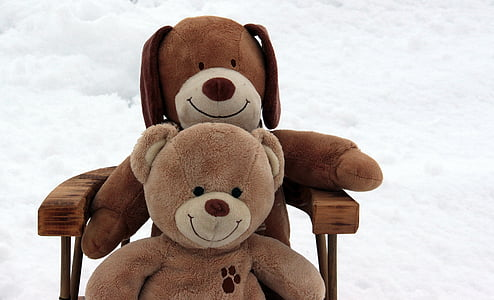 two brown and dog bear plush toys