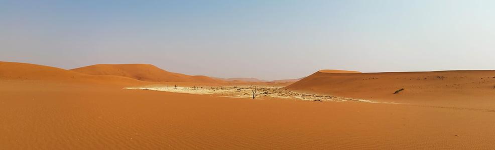 landscape photography of sand