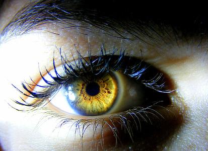 human brown eye