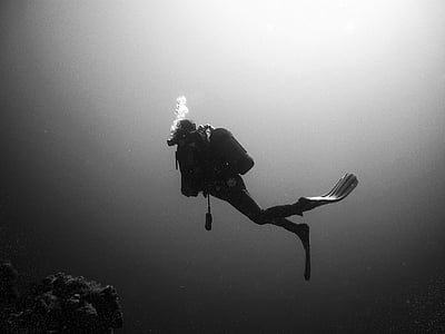 person diving underwater grayscale photo