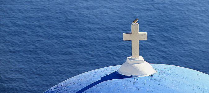 bird perched on white concrete cross