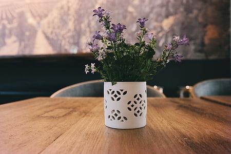 purple petaled flowers in white vase on table