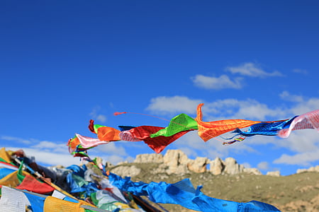 assorted-color kite lot at daytime