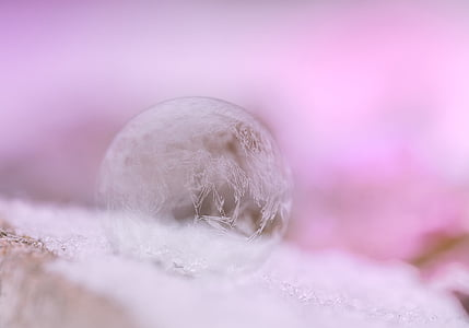 photography of frost bubble